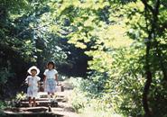 散策する子供 鴫の谷地沼
