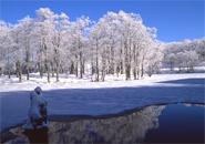 初雪の頃のドッコ沼
