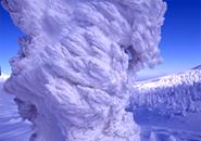 樹氷のエビのシッポ