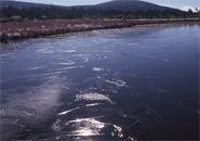 イロハ沼 初凍りの模様の耀き