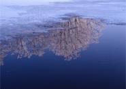 ドッコ沼 水面に映すブナ林の霧氷