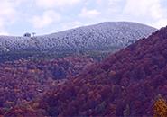初霜の装い 10月21日蔵王中腹と地蔵山頂
