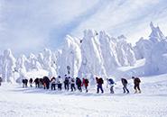 かんじきトレッキング 樹氷鑑賞コース