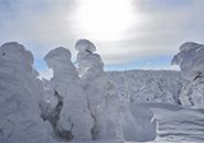 2016年12月18日 樹氷原コースを滑る