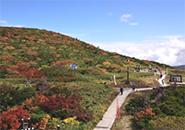 お地蔵様・三宝荒神山(地蔵尊秋季大祭 H29.9.24)