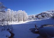 初冬期のドッコ沼 蔵王中央高原