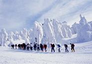 かんじきトレッキング 樹氷原を往く