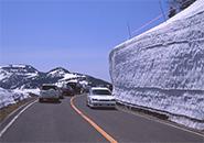 蔵王エコーライン 雪回廊
