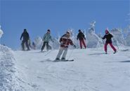 懺悔坂コースを滑るスキーヤー