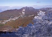 温泉の街 紅葉高原ブナ林霧氷