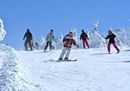 ザンゲ坂を滑る2月中旬頃のコース